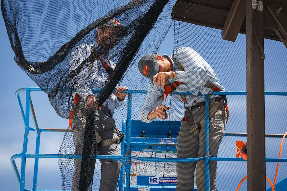 Two thorn professionals in a blue lift installing bird netting
