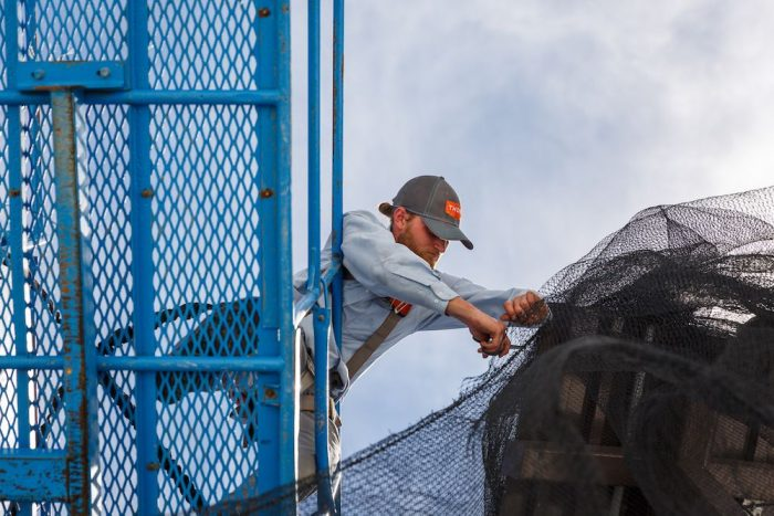 Thorn professional in a blue lift installing bird netting