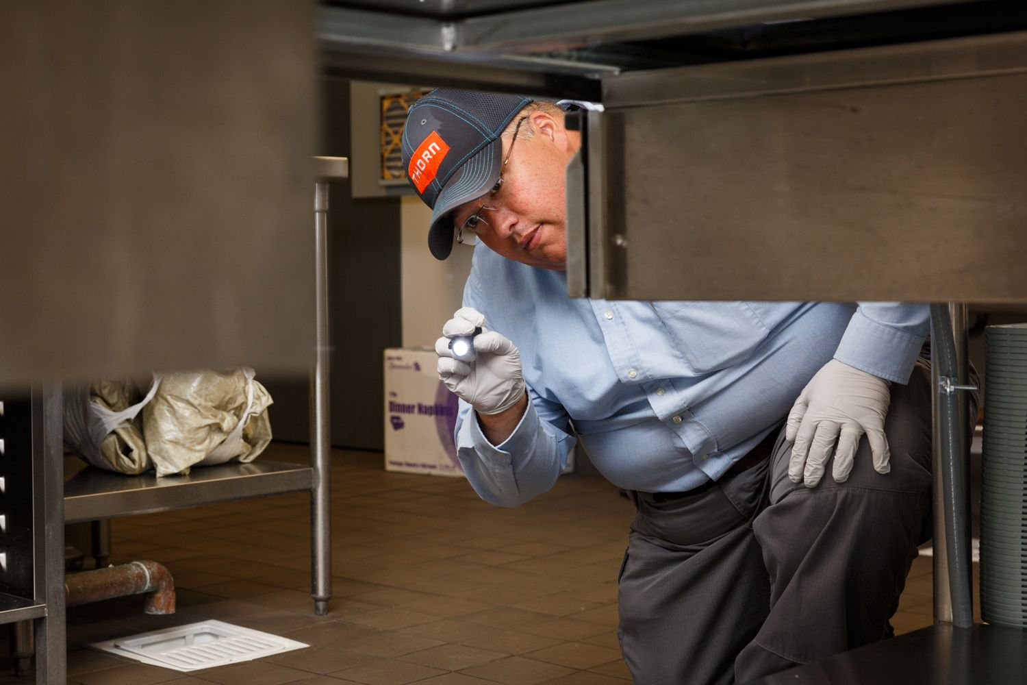 Thorn professional inspecting for pests under a counter