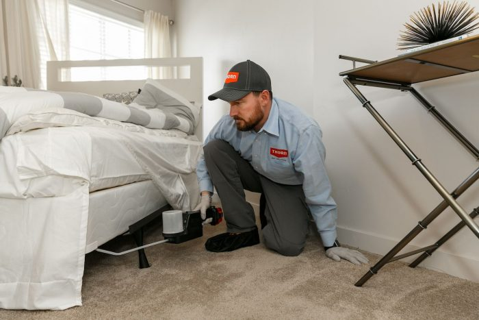 Preventative services for bed bugs in Utah